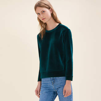 Maje Straight-cut velvet sweatshirt.