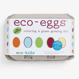 ABC Home Eco Egg Coloring & Grass Growing Kit