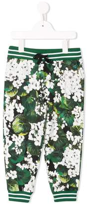 Dolce & Gabbana white geranium printed track pants