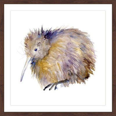 Wayfair 'Kiwi Bird' by Michelle Dujardin Framed Painting Print