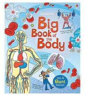 Harper Collins Big Book Of The Body