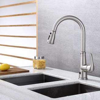 RunFine Group Pull Down Single Handle Kitchen Faucet