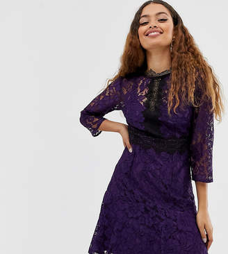 Little Mistress Petite contrast lace prom skater dress in purple