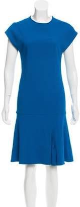 Schumacher Sleeveless Knee-Length Dress