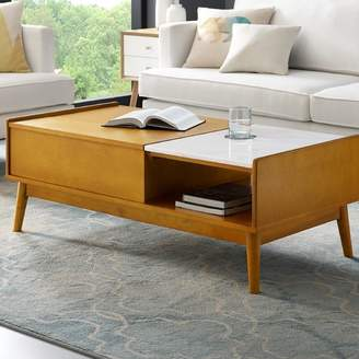 Langley Street Easmor Coffee Table with Storage