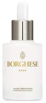 Borghese Acqua Ristorativo Hydrating Concentrate-1.oz