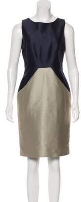 Oscar de la Renta Sleeveless Knee-Length Dress blue Sleeveless Knee-Length Dress