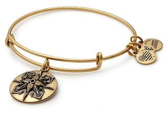 Alex and Ani Healing Love Charm Expandable Wire Bracelet
