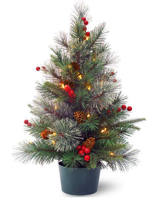 National Tree Company 2' Feel Real(R) Colonial Small Wrapped Tree with Red Berries, Cones & 35 Warm White Battery Operated Led Lights w/Timer