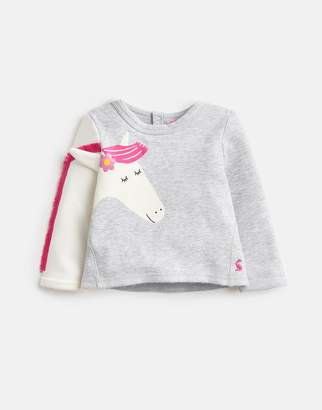 Joules Clothing Baby dash Novelty Arm Sweatshirt