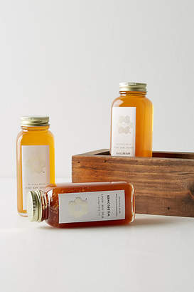 Anthropologie Honey Hutch Honey Flight