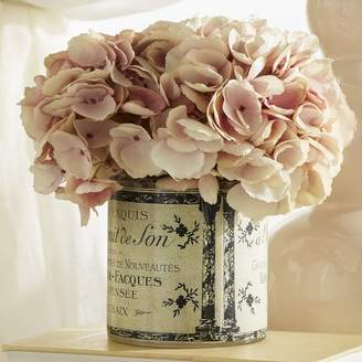 Ophelia & Co. Hydrangea Floral Arrangement in a French Label Pot