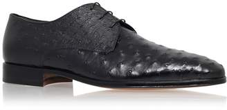 Stemar Ostrich Body Derby