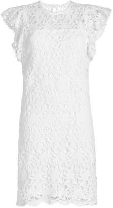Velvet Ally Lace Dress