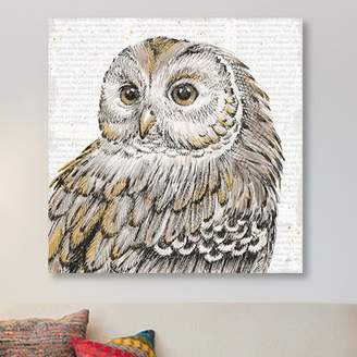East Urban Home 'Beautiful Owls I' Graphic Art Print on Canvas