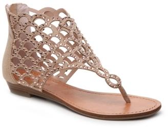 Zigi Soho Mela Gladiator Sandal $80 thestylecure.com