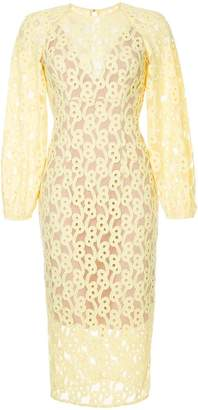 Ginger & Smart Link embroidered mesh dress