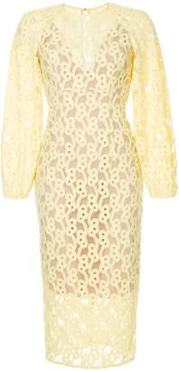 Ginger & Smart Link embroidered mesh dress