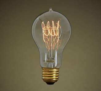 Pottery Barn Filament Loop 60W Light Bulb