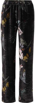 Markus Lupfer Amery Floral-print Velvet Straight-leg Pants - Black