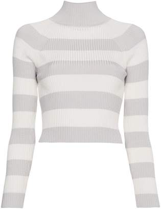 Zimmermann Stripe Crop Turtleneck