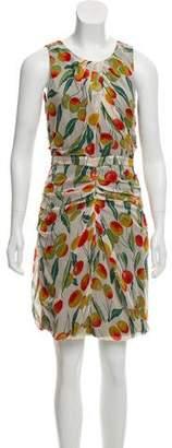 Diane von Furstenberg Paradis Silk Dress