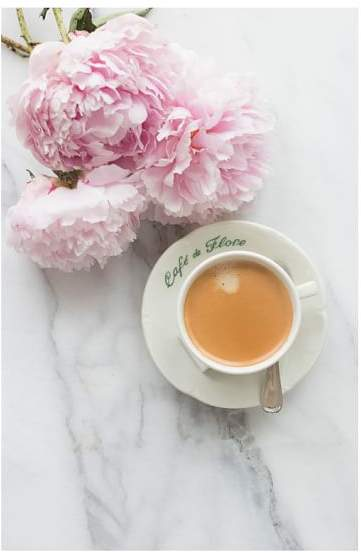 Coffee and Pink Peonies in Paris by Rebecca Plotnick