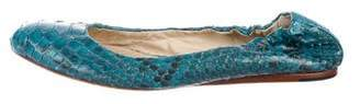 Alexandre Birman Snakeskin Ballet Flats
