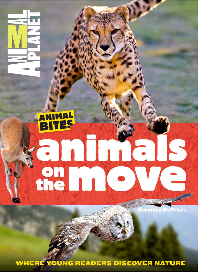Time Inc. AP Bites Animals on the Move