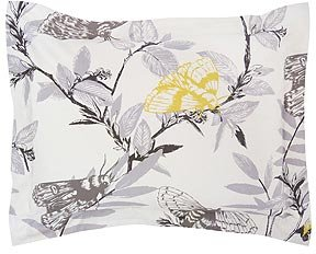DwellStudio Thicket Shams