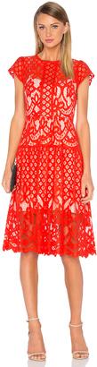 Parker Talulah Dress $288 thestylecure.com