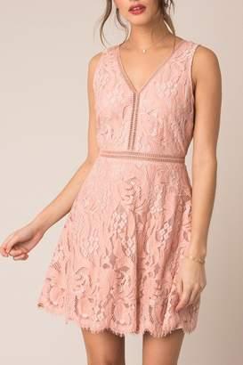 Black Swan Rose Lace Dress