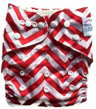 Piddly-Winx ' Chevron' One Size Fits All Bamboo Cloth Diaper with Insert