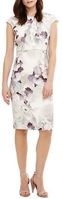 Phase Eight Wanda Floral-Print Sheath Dress