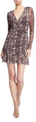 Parker Tina Sheer Long-Sleeve Mini Dress