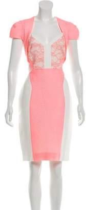 Antonio Berardi Short Sleeve Knee-Length Dress Pink Short Sleeve Knee-Length Dress