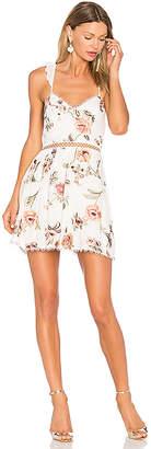 X by NBD Grady Embroidered Mini Dress