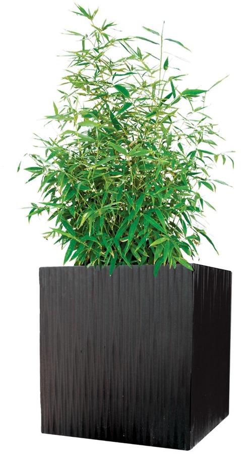 Modern Outdoor - Kenji Planter