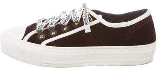 Christian Dior Velvet Low-Top Sneakers