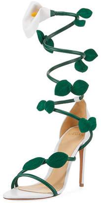 Iris Wrap-Around Sandal