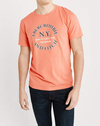 Abercrombie & Fitch Print Graphic Logo Tee