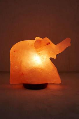 Elephant Himalayan Salt Lamp