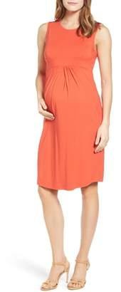 Isabella Oliver Coraline Maternity Shift Dress