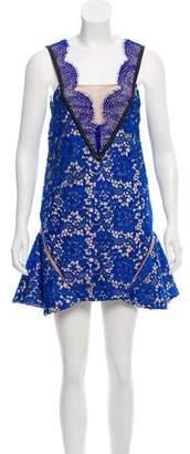 Three floor Lace Mini Dress