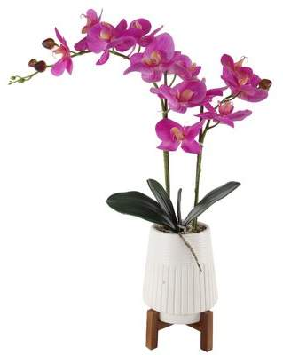 Ebern Designs 21 Real Touch Orchid Floor Flowering Plant in Ceramic Pot