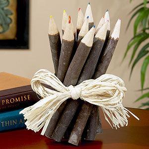 Set of 12 Twig Colored Pencils