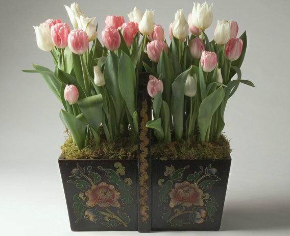 Tulips in Antique Trug