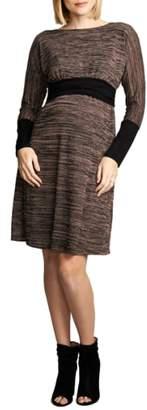 Maternal America Empire Waist Nursing Dress
