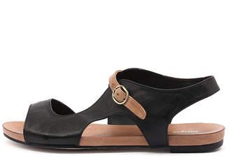 Django & Juliette New Jacobi Black Tan Strap Womens Shoes Casual