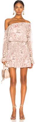 Alexis Royce Dress